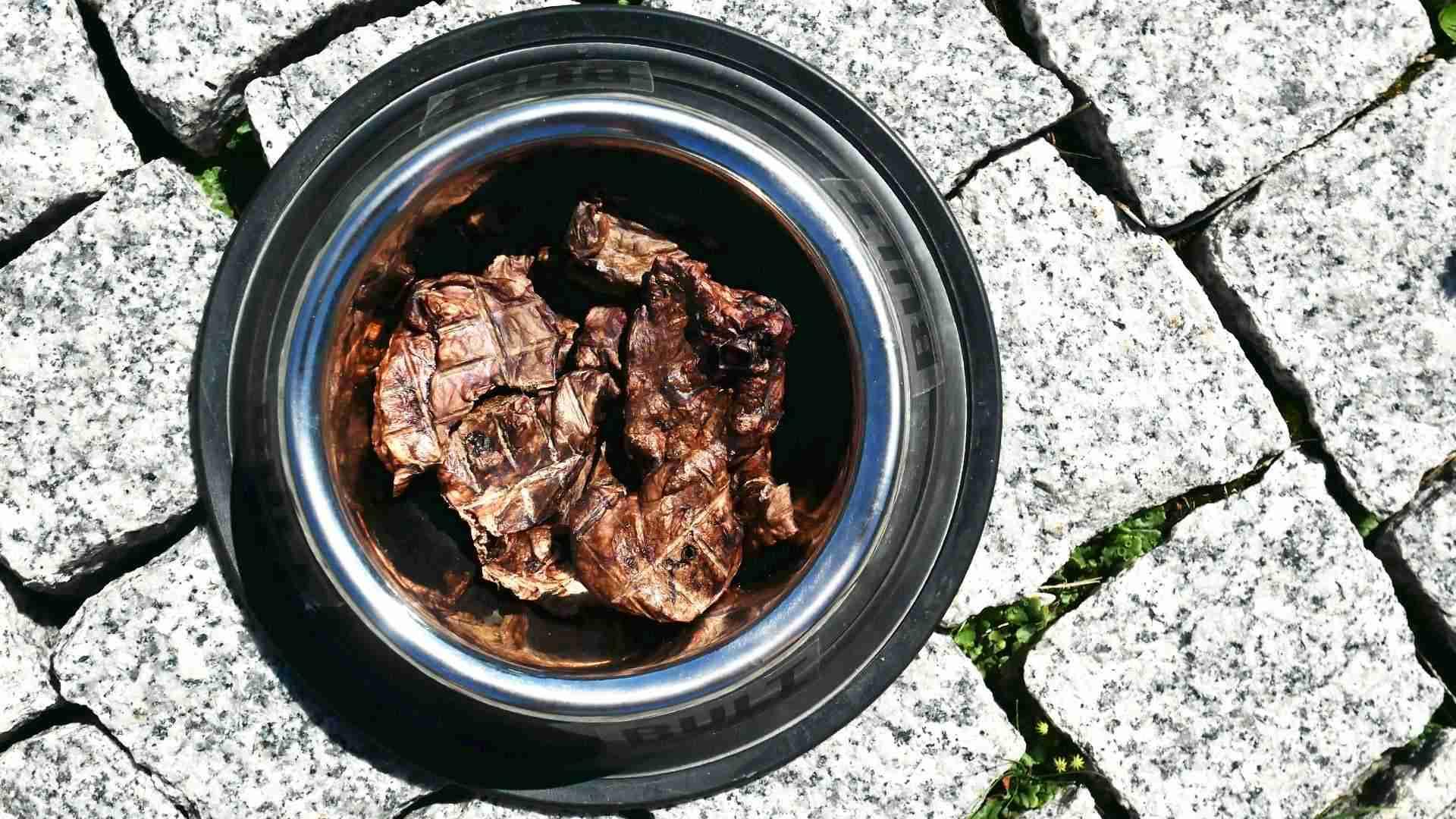 BULT płuca wieprzowe dla psa w misce
